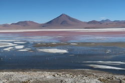 Laguna colorada dans le sud Lipez