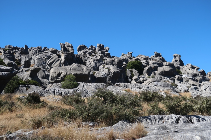 Flock hill