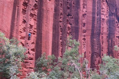 Un grimpeur dans 1/2 Route